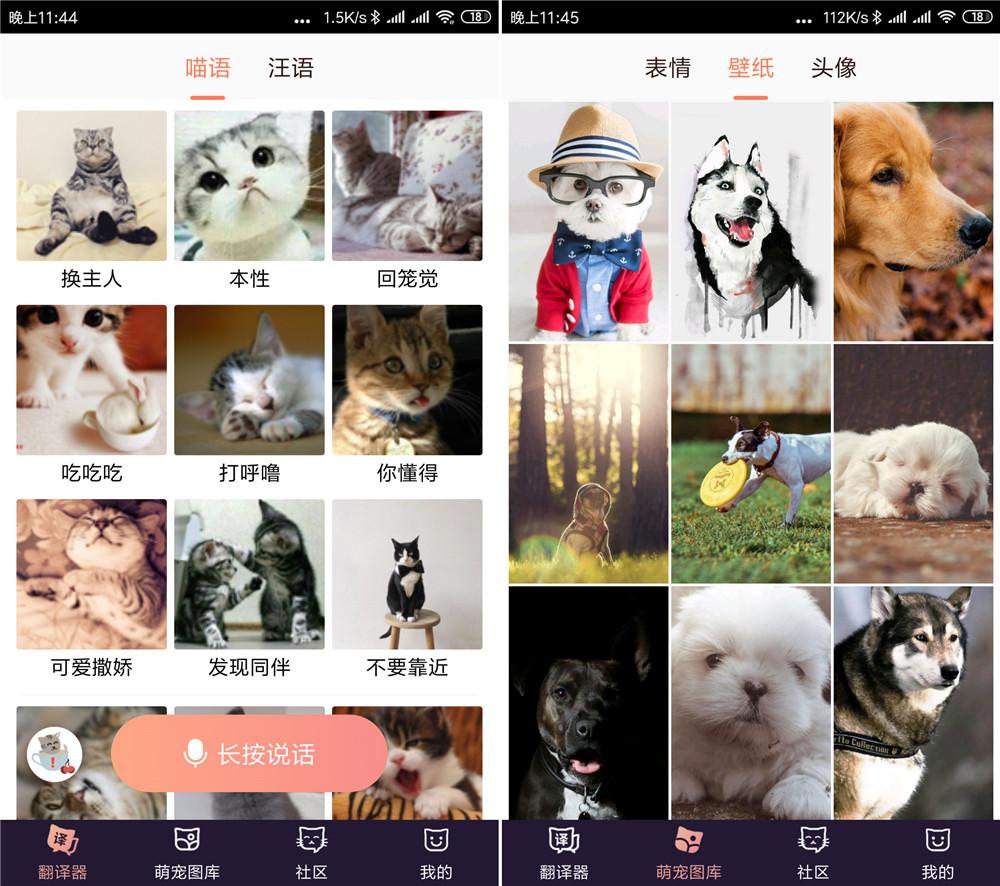 最新安卓猫语翻译器破解版 用手机和猫咪交流无需VIP